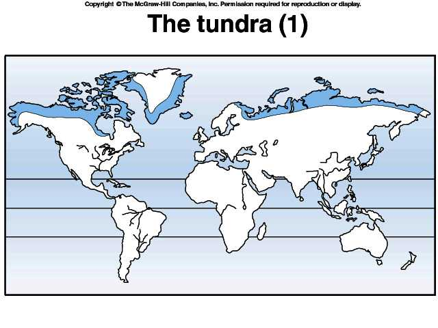 Arctic Tundra Biome Map